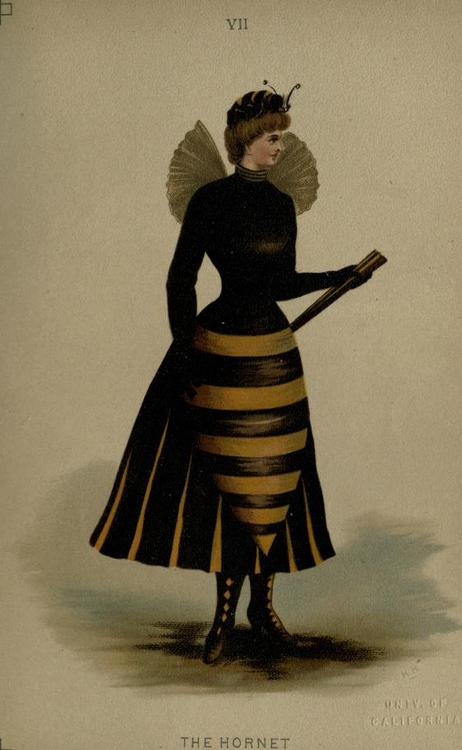beecostume Slutty Honeybee Super Hero Halloween Costume (Circa 1890)