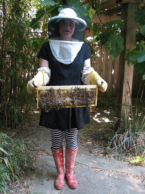 LBD beekeeping Convertible Clothes Are Not Just For Super Heroes. 7 Garments. 100+ Outfits.
